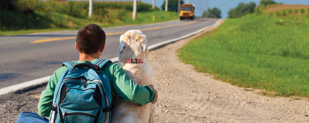 Dog sitting next to boy waiting on school bus